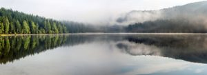 Header-Foggy-Lake